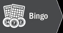 Bingo-Icon-Casino-Games-page