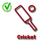 Cricket-yes-icon