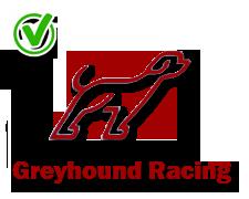 Greyhound-Racing-yes-icon