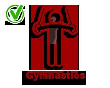Gymnastics-yes-icon