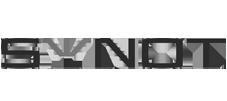Synot-Logo
