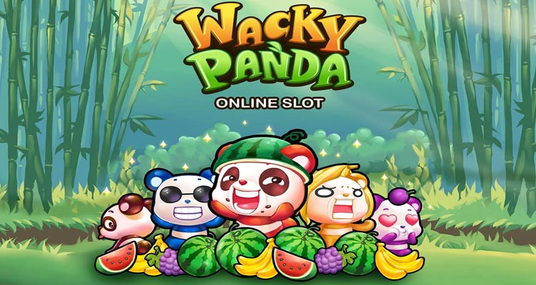 Wacky-Panda-Carousel-Image-1
