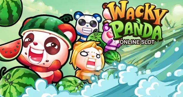 Wacky-Panda-Carousel-Image-5