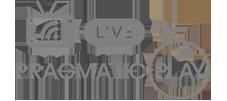 Pragmatic-play-live-logo